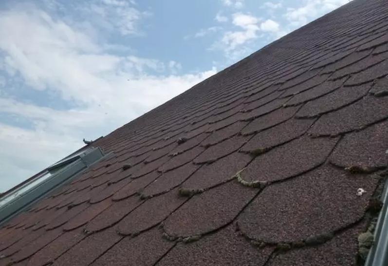 střecha nevětrá